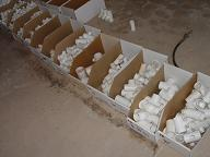 Assorted Smaller PVC Fittings